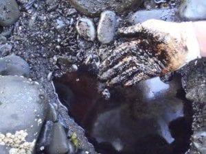 Petróleo ainda é encontrado nas praias 27 anos após o acidente