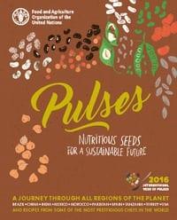Pulses: Sementes nutritivas para um futuro sustentável