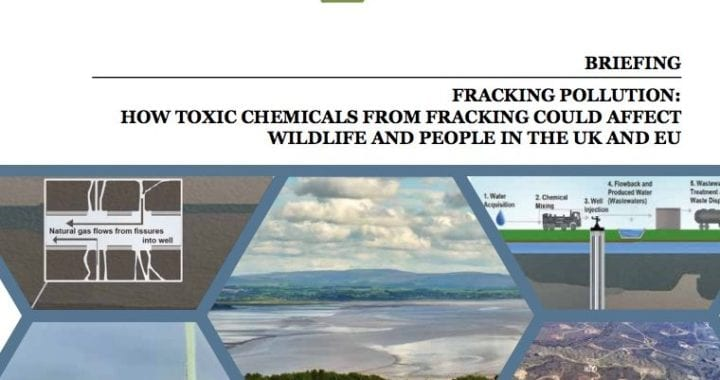 Fracking pollution: How toxic chemicals from fracking could affect wildlife and people in the UK and EU
