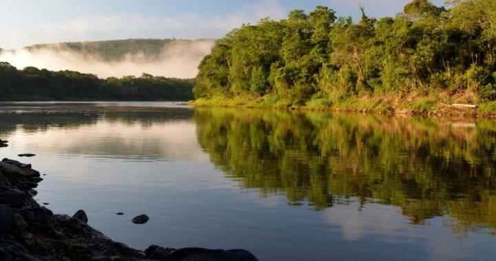 Governo do Paraná abre precedente para rios sadios virarem esgoto