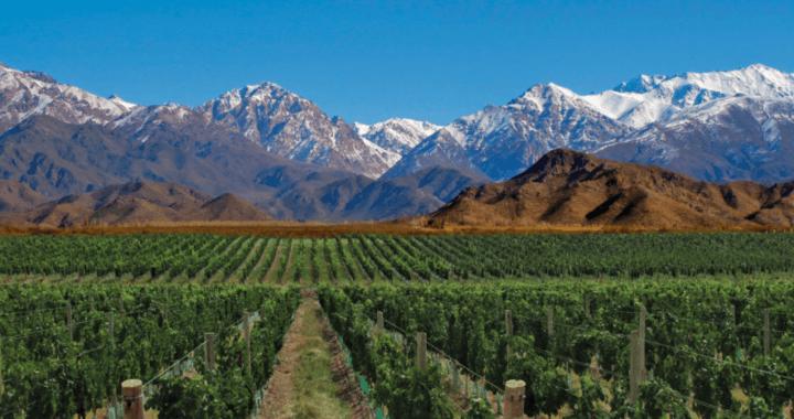 Argentina: Fracking ameaça a água e o vinho de Mendoza