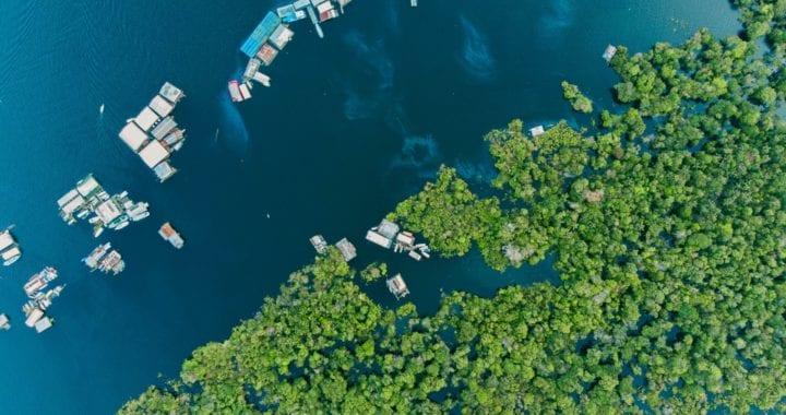 Brasil ocupa a 22ª posição no Índice de Desempenho de Mudanças Climáticas